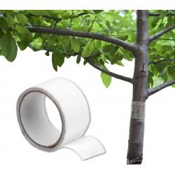 Lep taśma na szkodniki do drzew