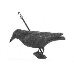 Kruk siedządzy odstraszacz ptaków
