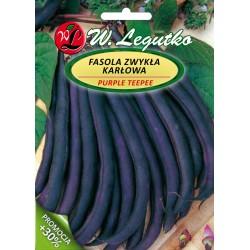 Fasola zwykła, Szparagowa - Purple Teepee - 30g + 10g