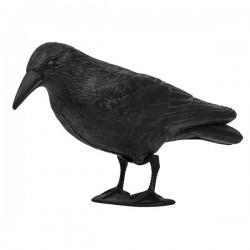 Kruk - odstraszacz ptaków