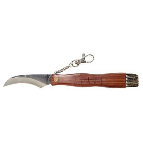 Nóż grzybiarza z pędzelkiem i miarką ostrze ze stali rącz